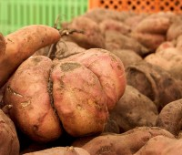 Batatas Glaseadas.