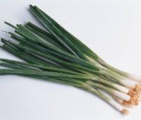 Salsa de verdeo: Receta simple y versátil