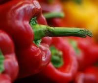 Morrones asados: como hacerlos y asarlos