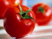 ¿Cómo pelar tomates?