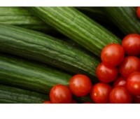 Fritura de tomates y zapallitos italianos