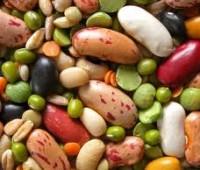 ¿Cómo cocinar legumbres? Secretos para cocinar legumbres