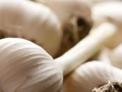 ¿Cómo quitar el exceso de ajo de una comida?