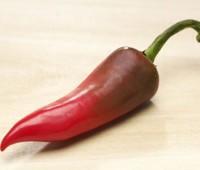 Secretos de los ajíes picantes o chiles