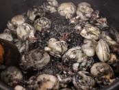 Calamaretes en tinta negra