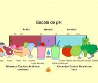 Alimentos que enferman: Bioguía