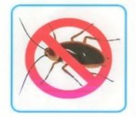 Cómo espantar hormigas y cucarachas de la cocina