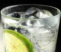 ¿Cómo hacer un buen Gin Tonic ? Consejos