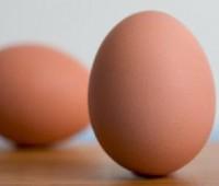 Calidad de los huevos: Factores que inciden en su calidad