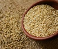 Quinoa: Alimento del futuro más allá