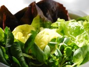 Aliñar hojas verdes