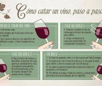 Paso a paso de cómo catar un vino: Imágen