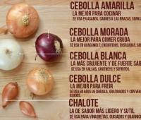 Variedades de cebolla: Infografía con sus características