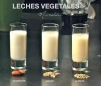 Leches de orígen vegetal: Variedades