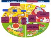 Nueva rueda de alimentos: Infografía
