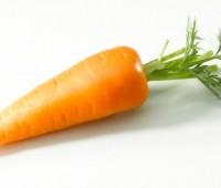 Zanahorias ¿Cómo cocinarlas?