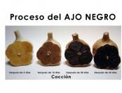 Proceso de cocción del ajo negro: Imágen y Video