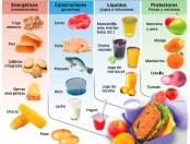 Alimentos para refrigerios saludables: Infografía