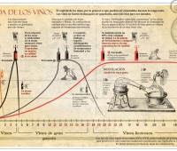 Selección de imágenes sobre el vino