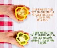 Secretos de las protuberancias de los pimientos: Imágen