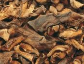 Papas con hongos de bosque al horno