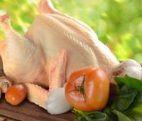 Receta del Chicken pie