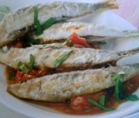 Sardinas sobre lecho de tomate