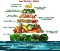 Alimentación viva: la nueva tendencia saludable
