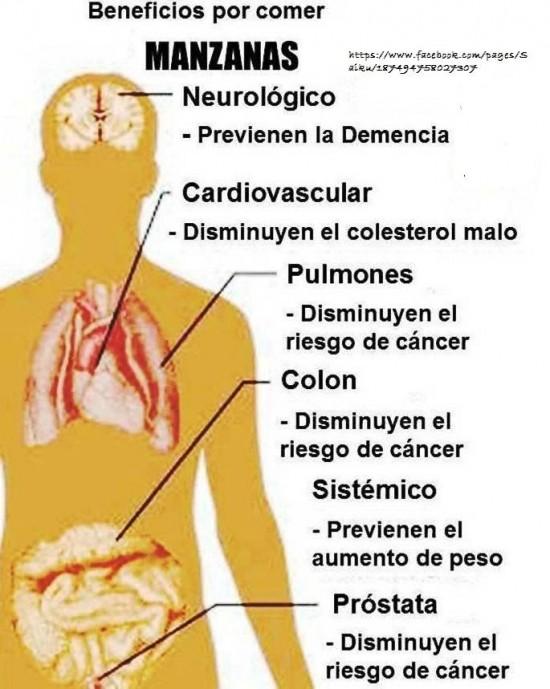 salud y cocina65_425414334235347_1325224092_n