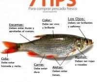 Imágen con consejos para comprar pescado fresco