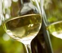 ¿Cuál es el vino blanco más emblemático de Argentina?