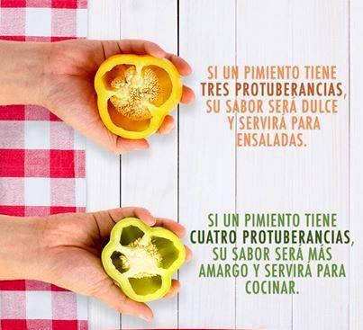 cocina10003314_10152068594207825_227176602_n