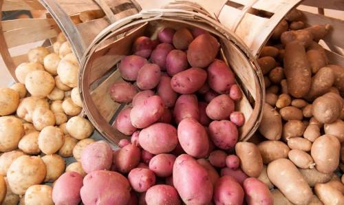 patatas-en-1-minuto-